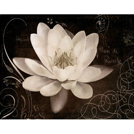 Garden Journal IV Classy Ad Quality Lovely Best Lotus White Retro Orchid Marble Poster