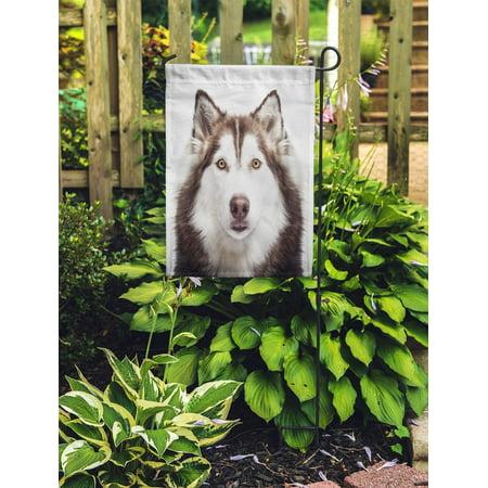 NUDECOR Face Siberian Husky Studio Shoot Dog Wolf Beautiful Happy Garden Flag Decorative Flag House Banner 28x40 inch - image 1 of 2