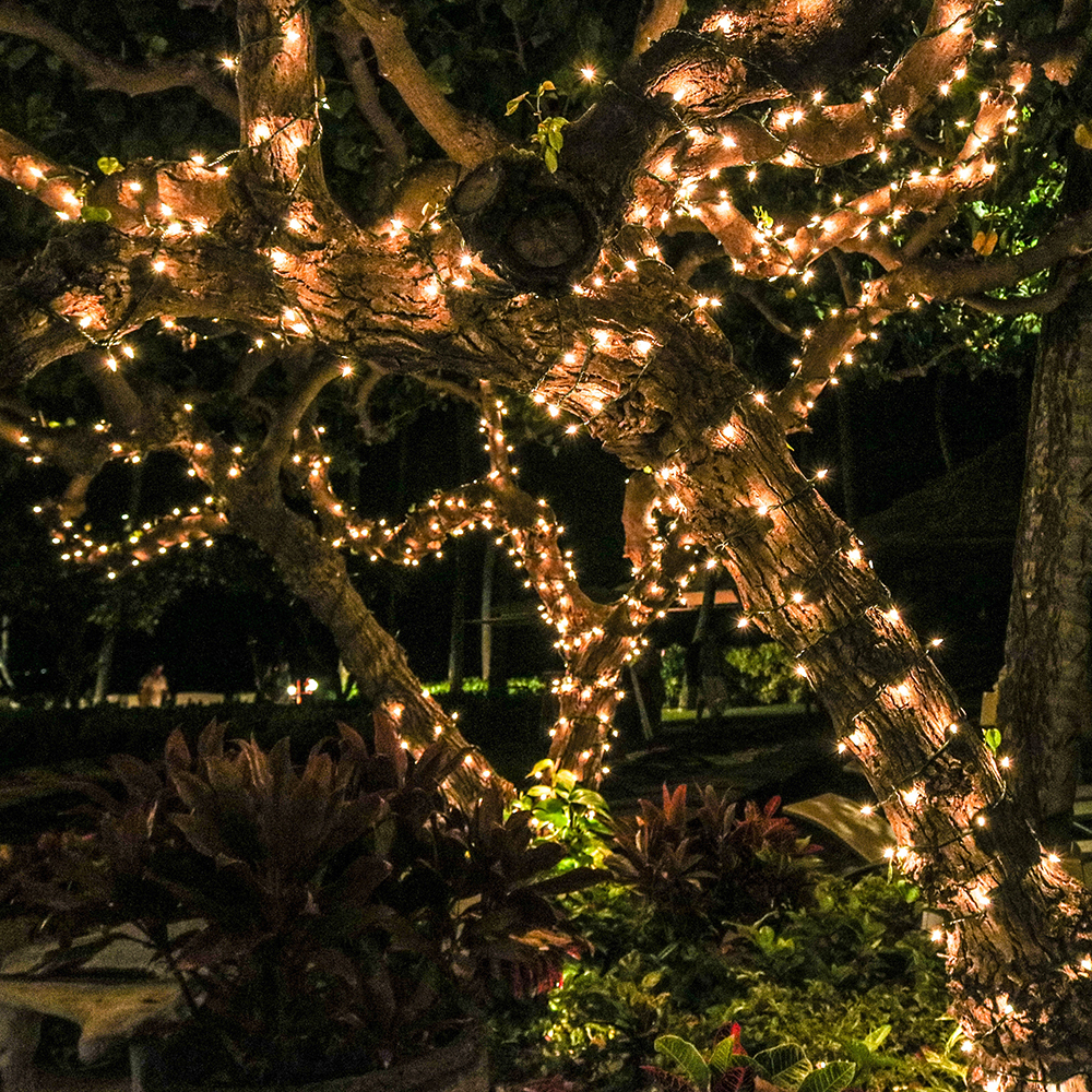 (2-Packs)Solar Rope String Lights Outdoor Decoration Lights,72ft 200 LED Waterproof Fairy Copper Wire Solar String Lights for Indoor Outdoor Patio,Lawn,Garden (Warm white) - image 8 de 15