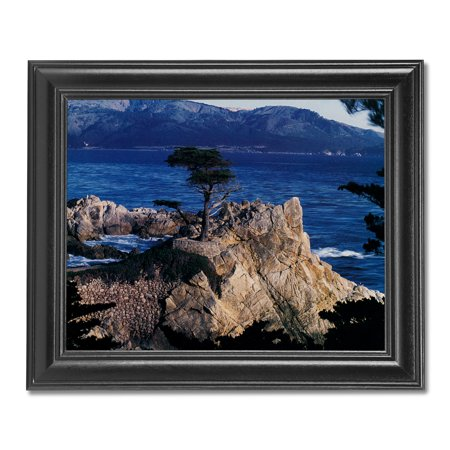 The Lone Cypress Tree Pebble Beach Ocean Photo Wall Picture Black (Cypress Frames)