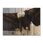 Day Dream HQ BAE2216 22 x 16 in. Bald Eagle Inside & Outside Cedar Wall Art