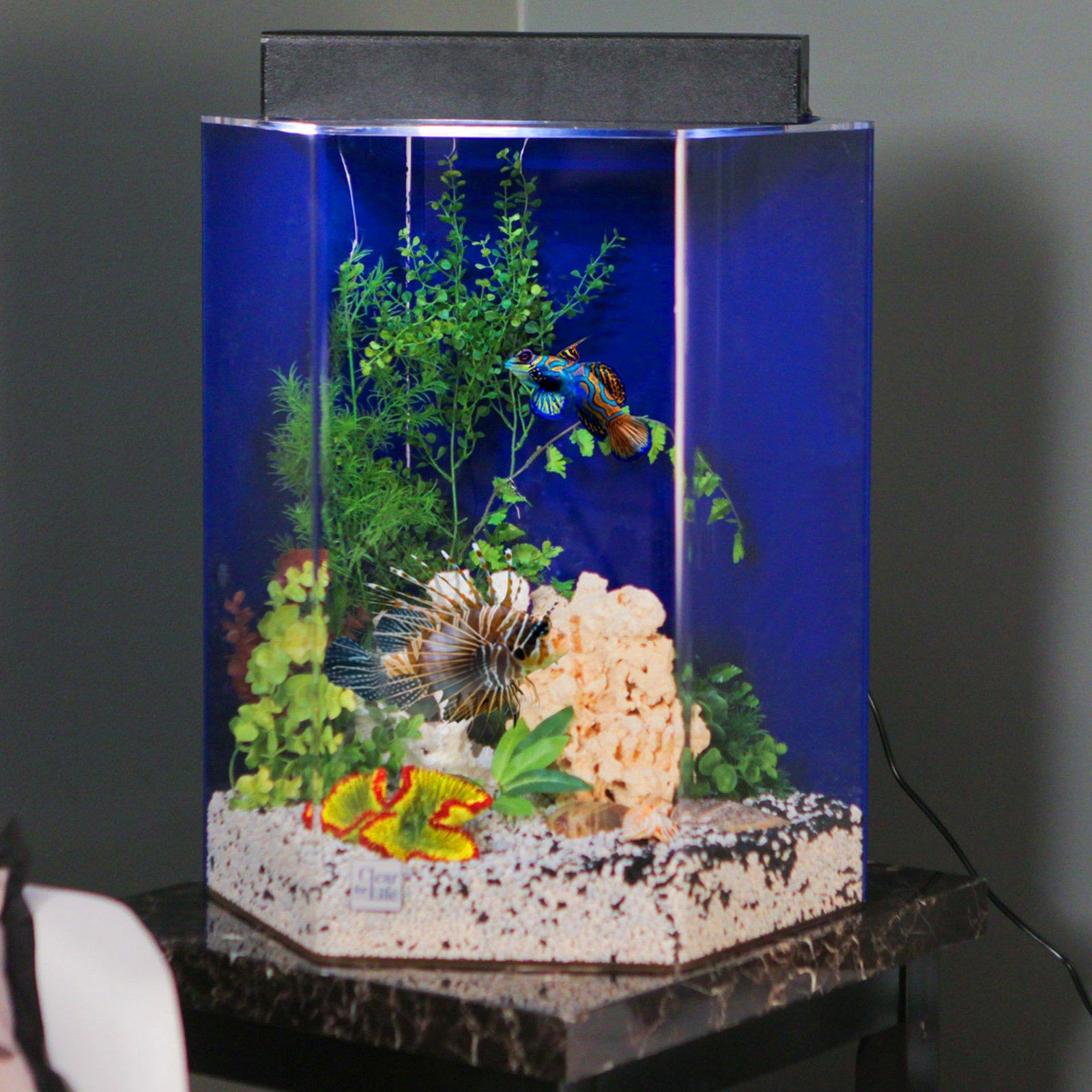 Clear For Life Hexagon Aquarium Walmart