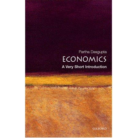 Economics: A Very Short Introduction - eBook