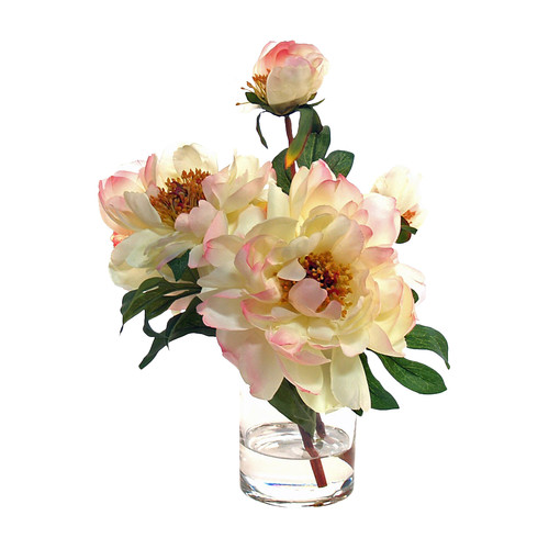 Creative Displays, Inc. Peonies Water Vase