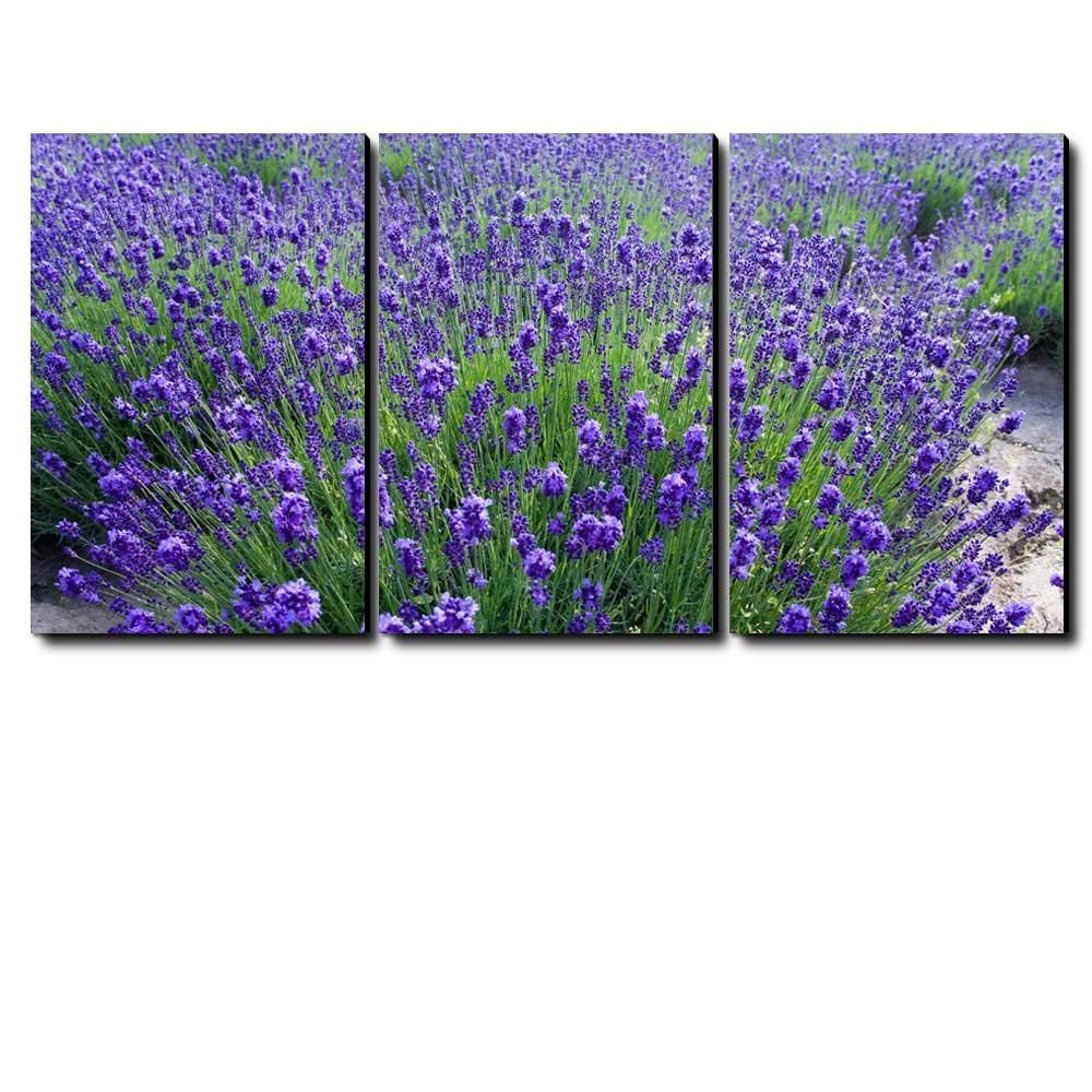 "Canvas Prints 12/"" x 18/"" Lavender FieldModern Wall Decor//"