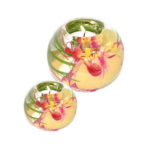 Bloomsbury Market Phalaenopsis Orchid 2 Piece Glass Tealight Set