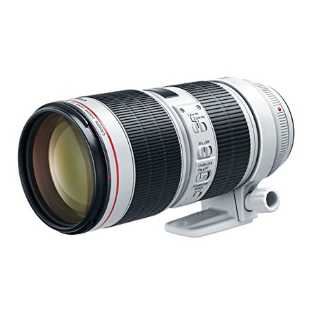Canon 70 mm to 200 mm f/2.8 Telephoto Zoom Lens for Canon EF (Canon 70 200 Vs 100 400 Ii)