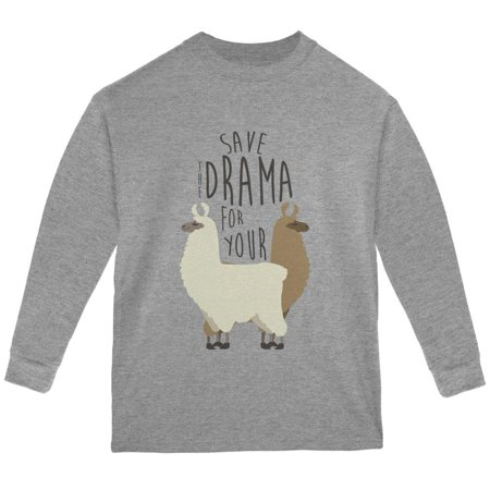 Save the Drama for Your Llama Pun Youth Long Sleeve T
