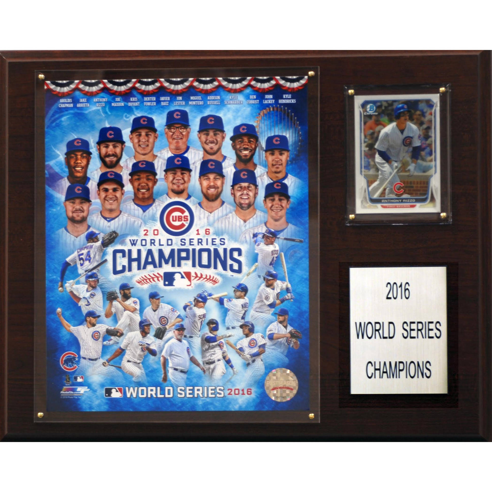 "C & I Collectables MLB 12"" x 15"" Chicago Cubs 2016 World Series Champions"