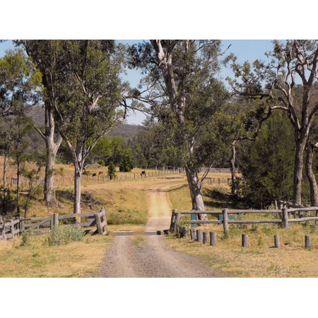 Australian Tack (LAMINATED POSTER Queensland Country Road Australia Track Poster Print 24 x 36 )