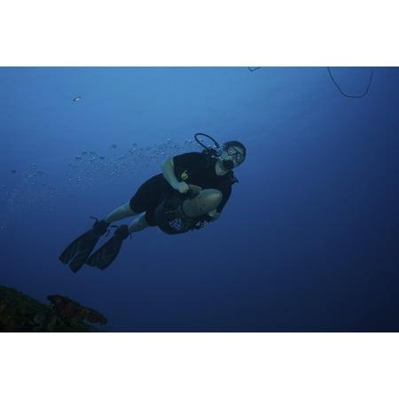 Diver Propulsion Vehicle (Scuba diver uses a diver propulsion vehicle off the coast of Bonaire Caribbean Netherlands Stretched Canvas - Terry MooreStocktrek Images (35 x 23))