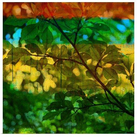 Great BIG Canvas | Rolled Sisa Jasper Poster Print entitled Abstract Leaf Study I