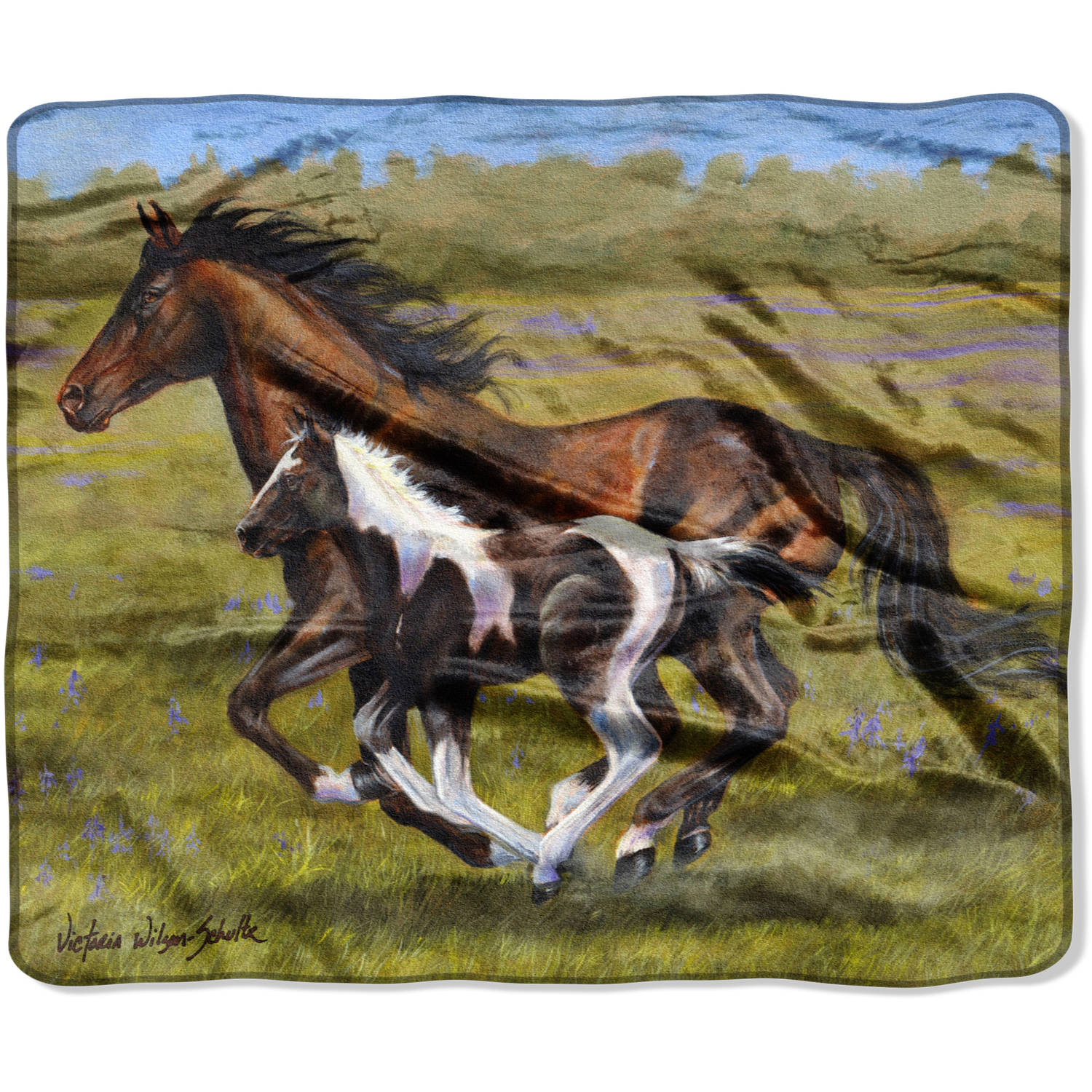 "The Northwest Company American Heritage Collection Victoria Schultz's ""Keeping Up with Mom"" 50""x 60"" Royal Plush Raschel Throw"