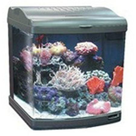 JBJ 24 Gallon Nano Cube Deluxe Aquarium 2X36W Compact Fluorescents & LED Moonlights