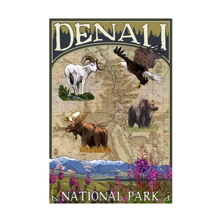 Denali National Park Topographic Map.Denali Alaska National Park Topographical Map Print Wall Art By