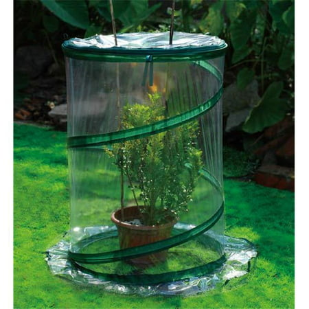 Zenport SH3240-10PK Pop-Up Greenhouse Protects Shrubs Small, Box of 10 Easy Pop Up Greenhouse