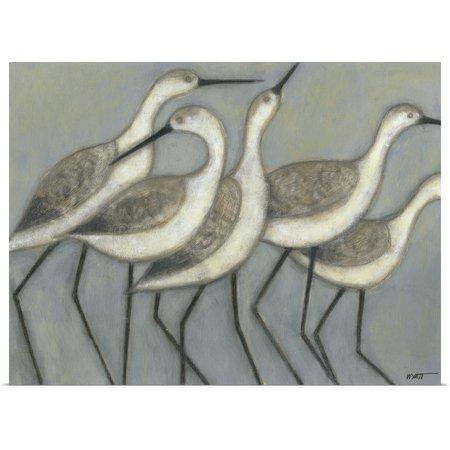 Great BIG Canvas | Rolled Norman Wyatt Poster Print entitled Shore Birds II
