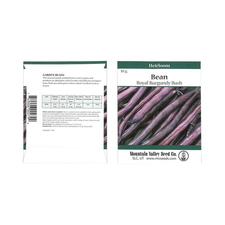 Royal Burgundy Bush Bean Seeds - 30 Gram Packet- Non-GMO, Heirloom Green Snap Bean Seeds - Vegetable Garden Seeds