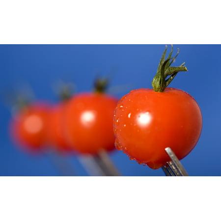 Cherry Tomatoes Posterprint
