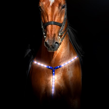 Tooled Roper Breast Collar - Rural365 | LED Horse Breastplate Collar – LED Horse Tack Breast Collar