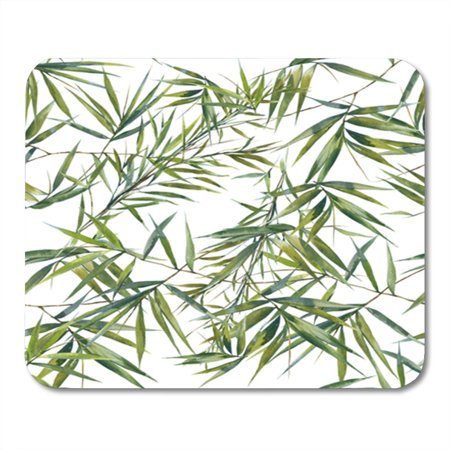 KDAGR Colorful Drawing Watercolor of Bamboo Leaves on White Green Botanical Tropics Tree Plant Vintage Mousepad Mouse Pad Mouse Mat 9x10 inch