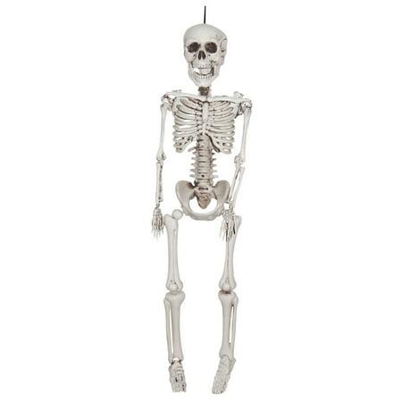12 Inch Plastic Realistic Skeleton - image 1 de 1