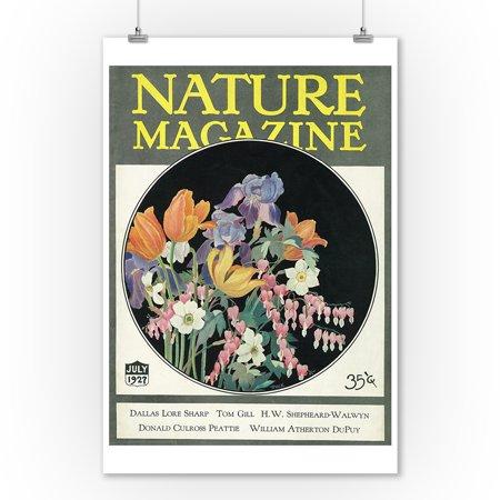 Nature Magazine - View of Flowers (9x12 Art Print, Wall Decor Travel Poster) (Flowers Magazine)