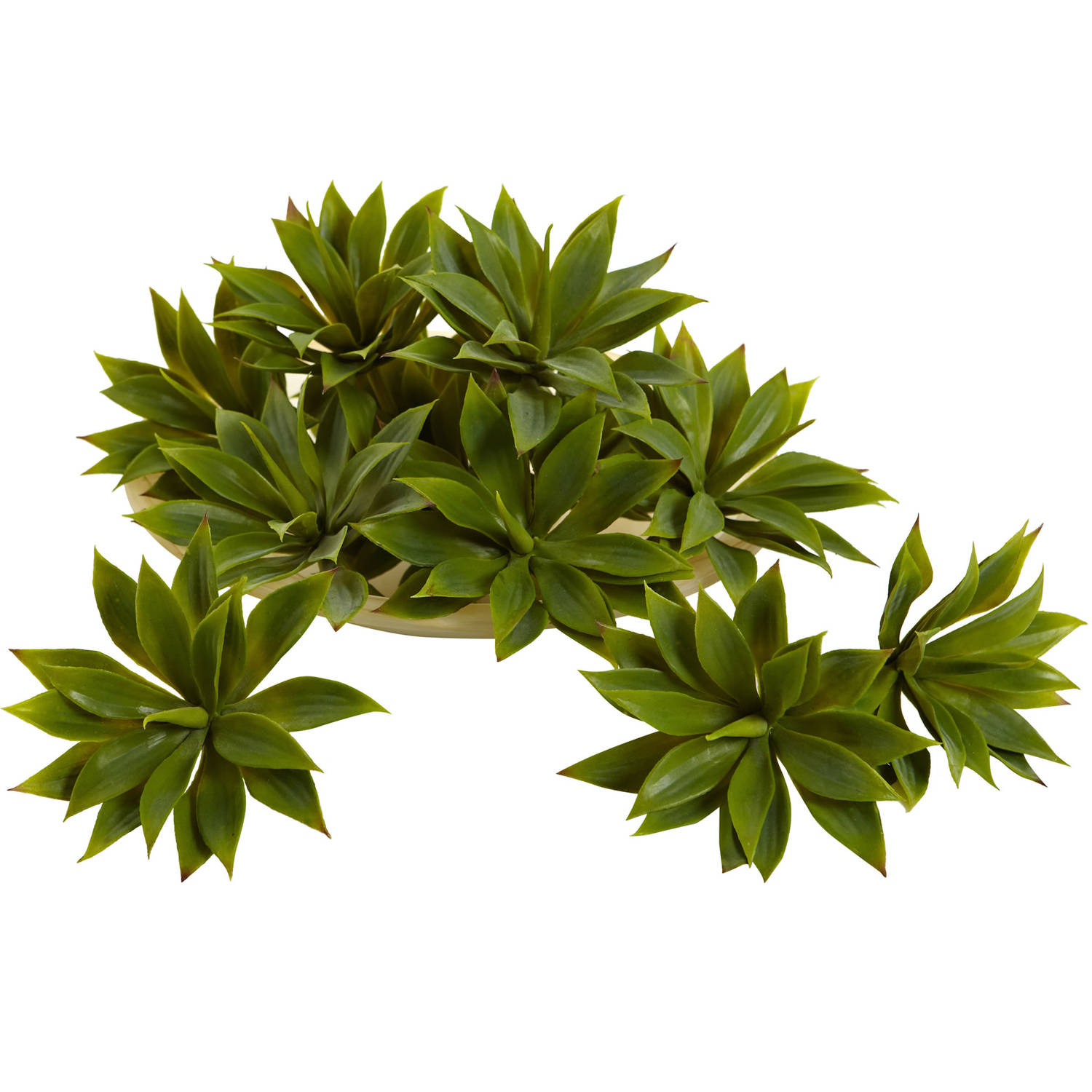 Nearly Natural Mini Agave Succulent Plant (Set of 12)