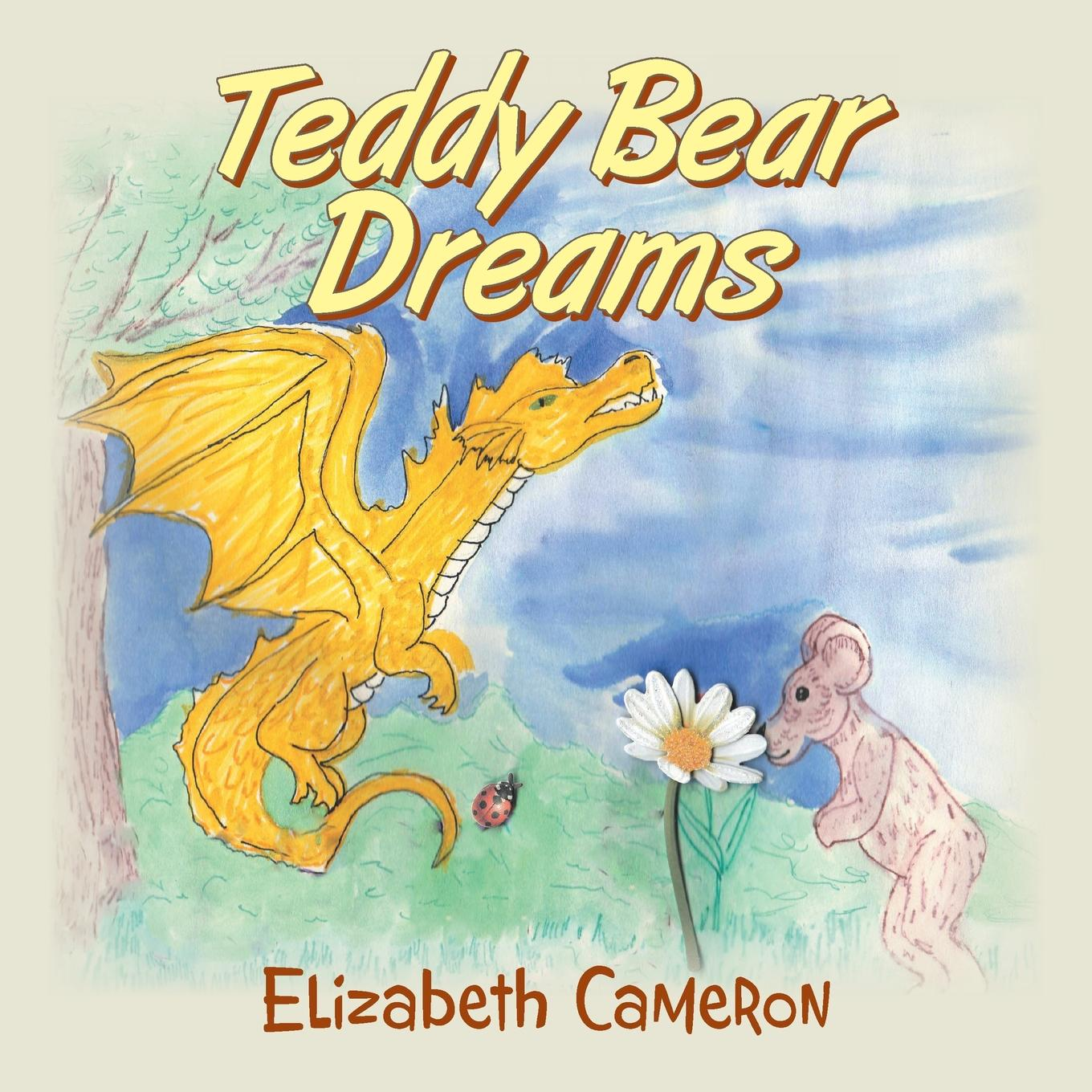 Teddy Bear Dreams (Paperback)