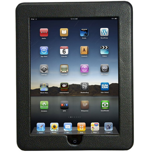 Icon Apple iPad Frame Case