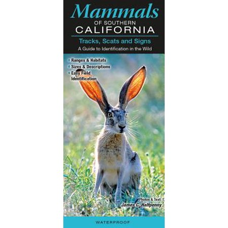 Mammals of Southern California : Tracks, Scats and Signs; A Guide to Identification in the (Black Sabbath The Sign Of The Southern Cross)