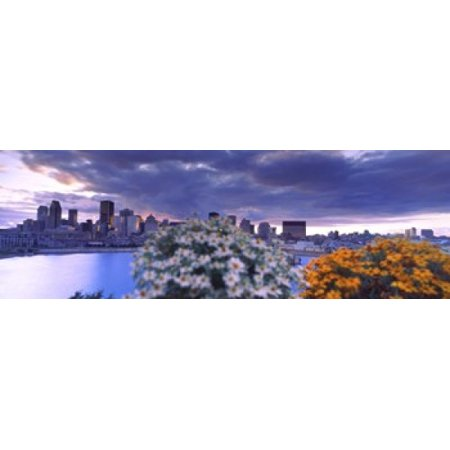 Blooming flowers with city skyline in the background Montreal Quebec Canada 2010 Poster Print