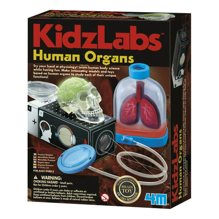 4M Kidz Labs Science & Learning Kit: Human Organs