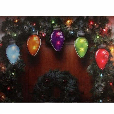 10 Multi-Color Shimmering C7 Bulb Christmas Light Garland Clear Mini Lights - 4.8 ft White Wire