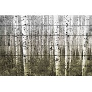Parvez Taj Aspen Highland - 24 x 36