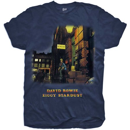 David Bowie Ziggy Stardust Costume (David Bowie Boys' Ziggy Stardust Childrens T-shirt)