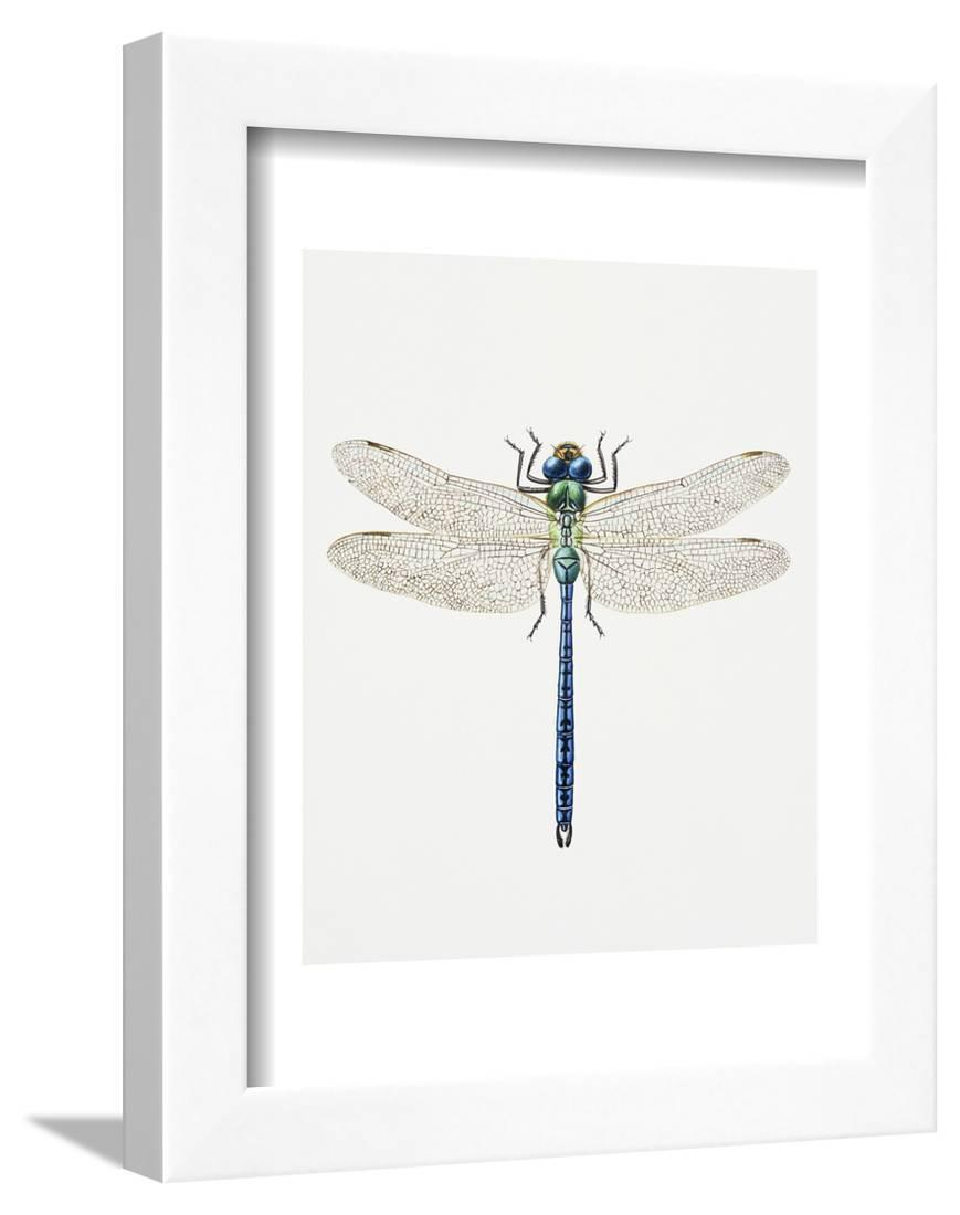 12x Glittered Decorative Dragonflies perfect for Weddings Floristry Parties