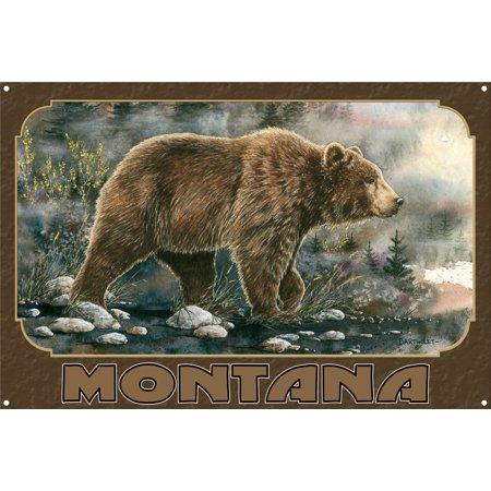 Montana Grizzly Bear Metal Art Print by Dave Bartholet (12