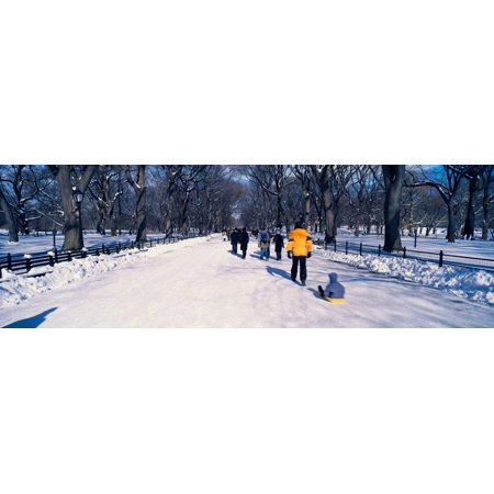Panoramic view of walker pulling sled with child on fresh snow in Central Park Manhattan New York City NY in winter Stretched Canvas - Panoramic Images (27 x - City Park Kids Furniture