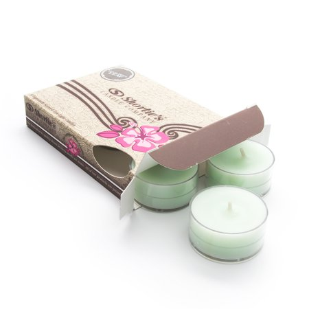 Eucalyptus Leaf Green Tea Light Candles 6 Pack - Highly Scented, Hand Poured, & Clean Burning - Clear Container for Beautiful Candlelight - Clean Tealights Collection