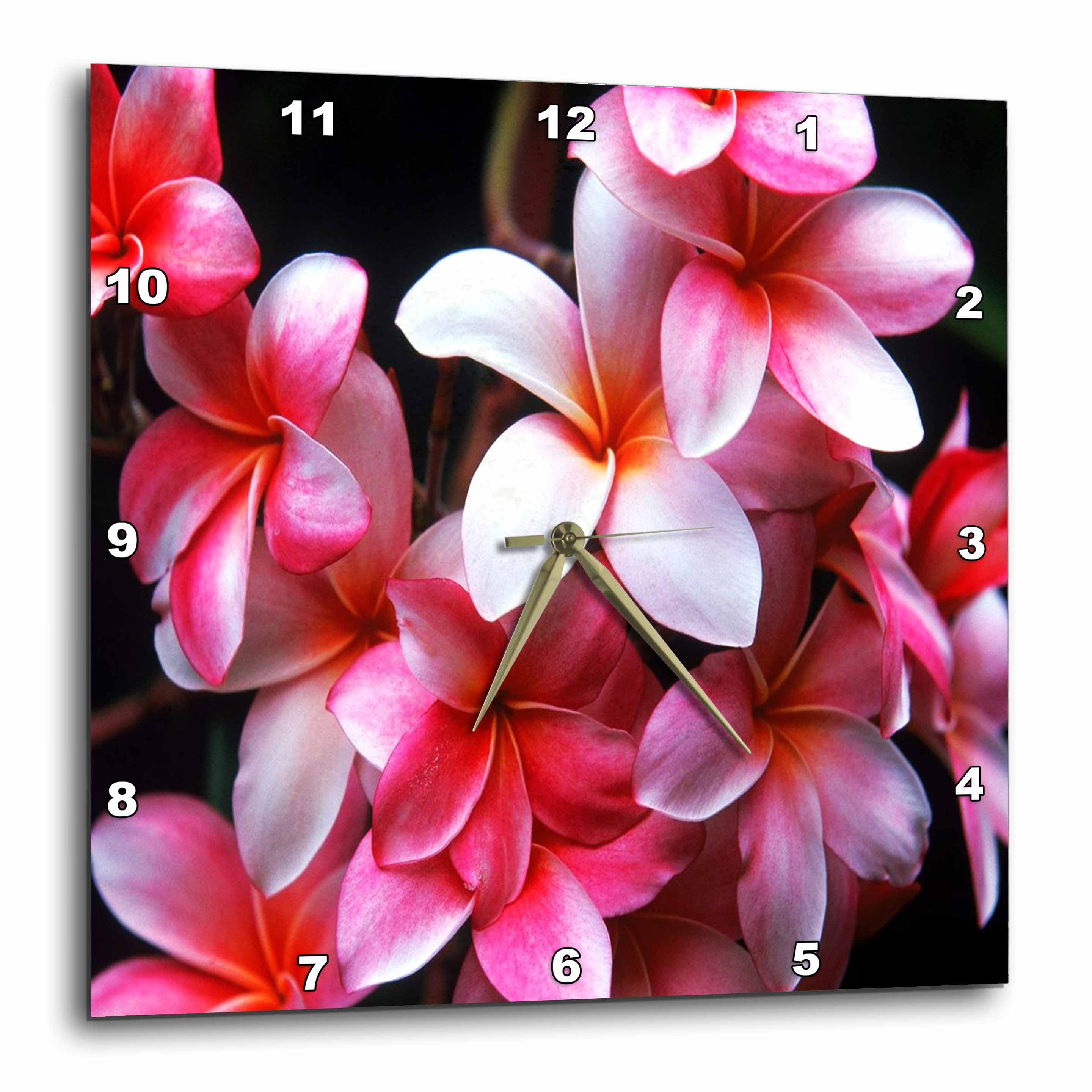 3dRose Hawaiian Fuchsia Colored Plumeria Flowers, Wall Clock, 15 by 15-inch