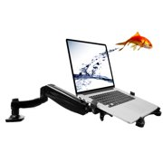 """Loctek D5L Swivel Arm Laptop Mount Monitor Stand Support for 11"""" - 15.6"""" notebook Computer"""