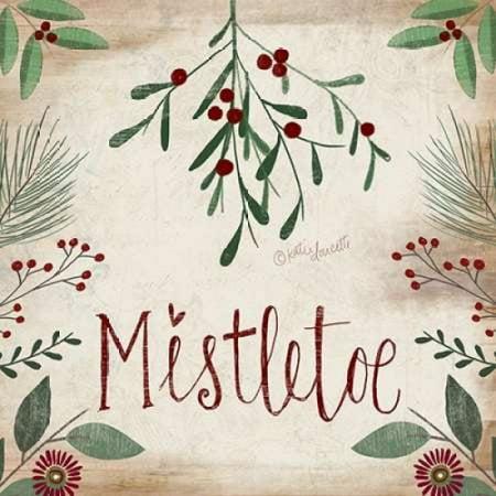 Mistletoe Rolled Canvas Art - Katie Doucette (12 x 12)