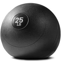Titan Fitness 25 lb Weighted Slam Spike Ball