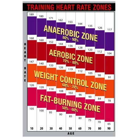 Training Heart Rate Zones Chart (Bright) Poster - 13x19