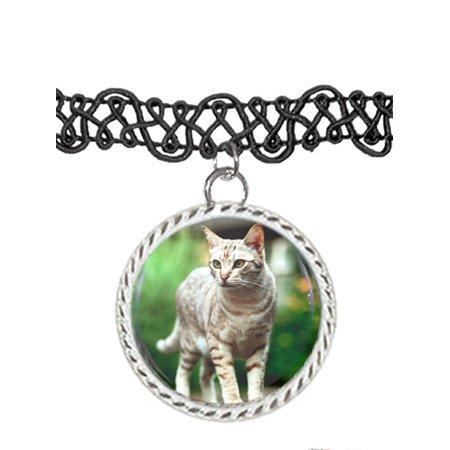 71f2533c07c0a A Savannah Brown Cat Choker Pendant Charm Necklace