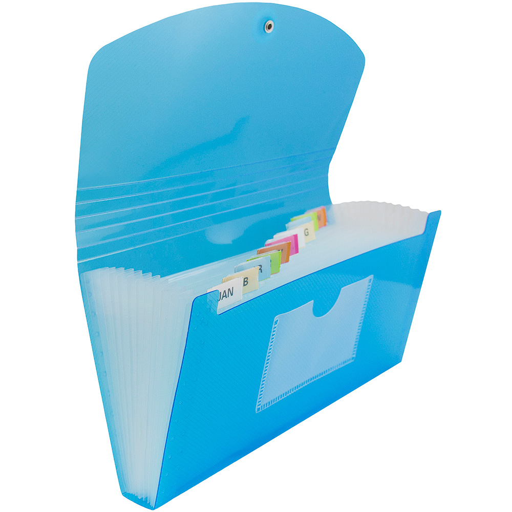JAM Paper Accordion Folders, 13,Pocket Plastic Expanding File with Button & String Closure, Check Size, 5 x 10 1/2, Blue, Sold Individually