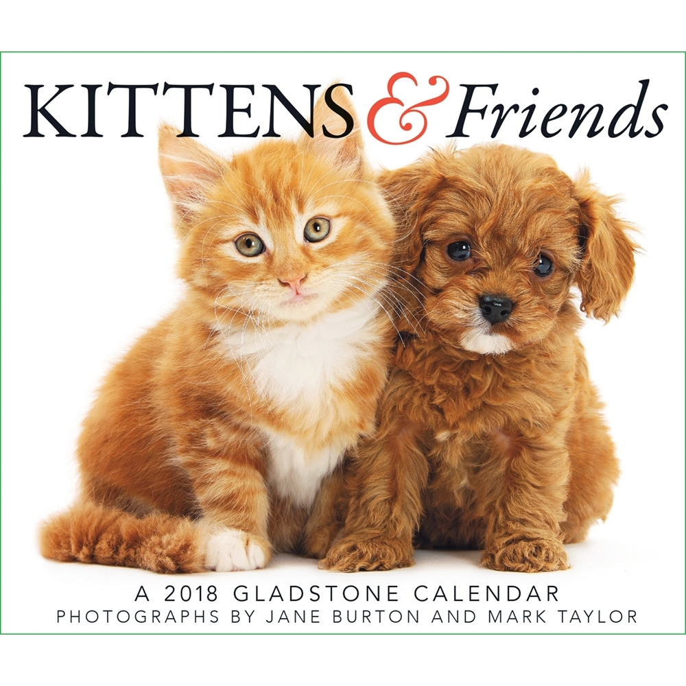 2018 Kittens and Friends Desk Calendar, Kittens by Gladstone Media by