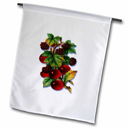 3dRose Victorian Illustration of Deep Red Cherries and Blackberries - Garden Flag, 12 by 18-inch
