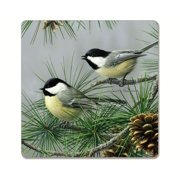 Beautfiul Songbirds Hardboard Coaster